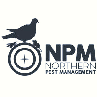 Northern Pest Management.png